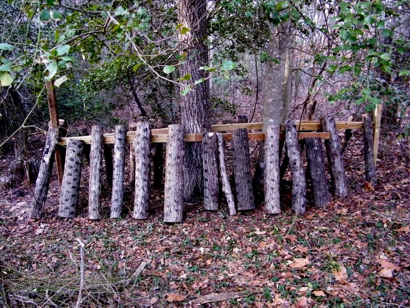 Shiitake mushroom logs.