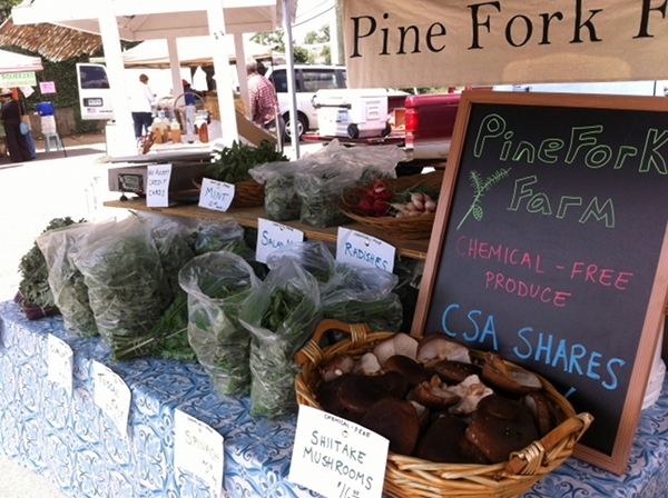 Pine Fork Farm tent at the Carytown Farmers Market.
