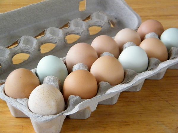 Eggs from our flock of laying hens.