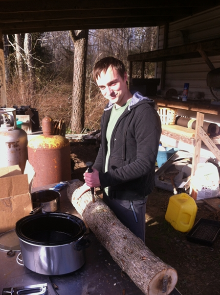 Gus inoculating logs with shiitake mushroom spawn.